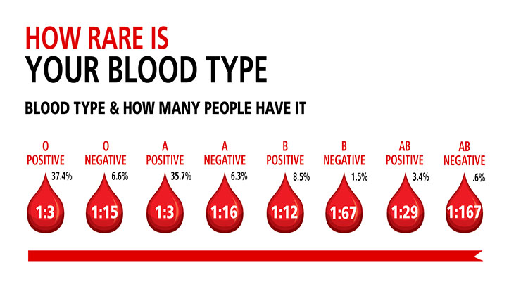 Donating a pint of blood can save up to three lives. The community blood center sends out 3,600 units of blood a week to treat patients in almost 60 hospitals.