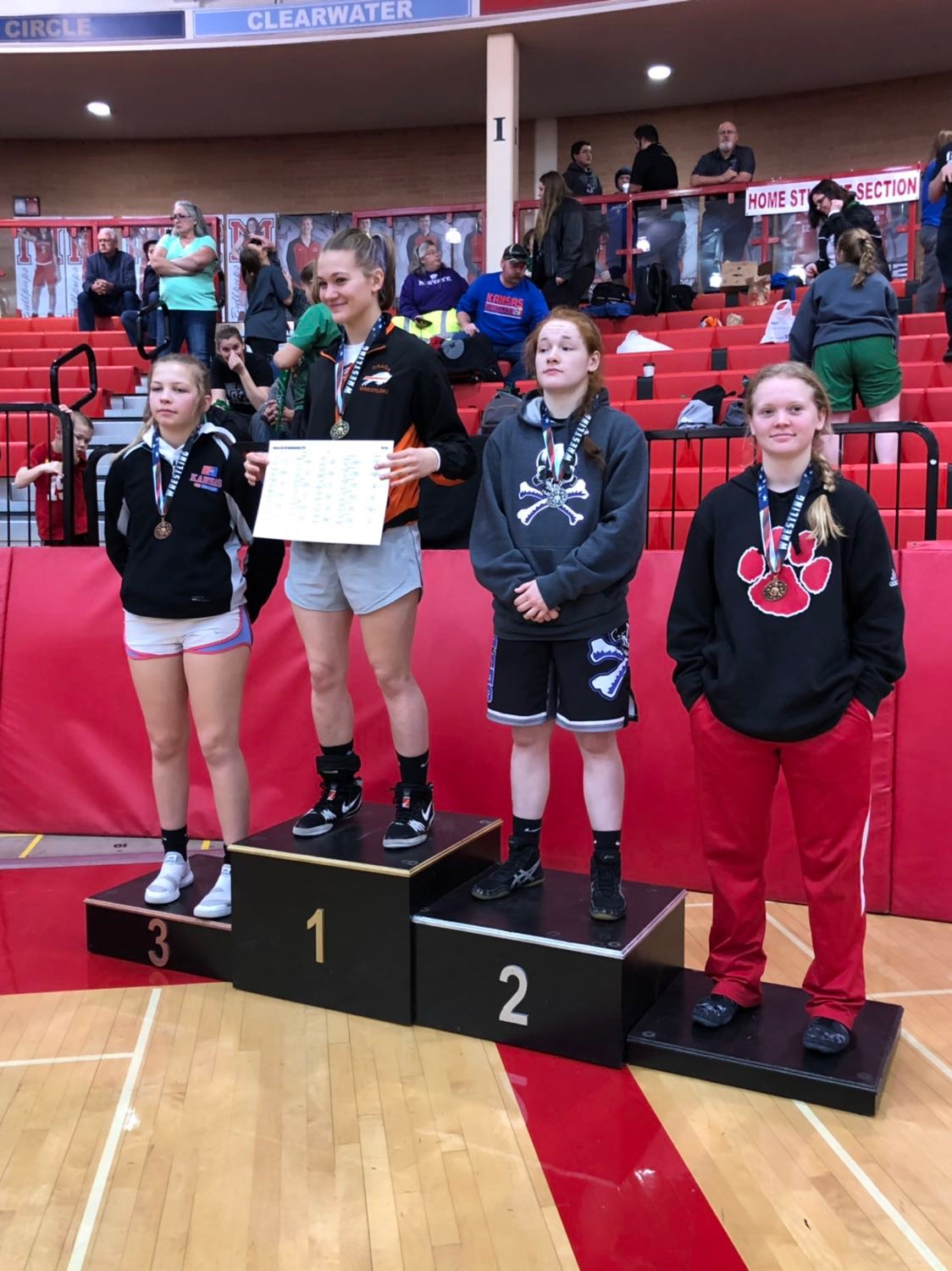 Sophomore Sara Lake said that she would definitely encourage more girls to join wrestling.