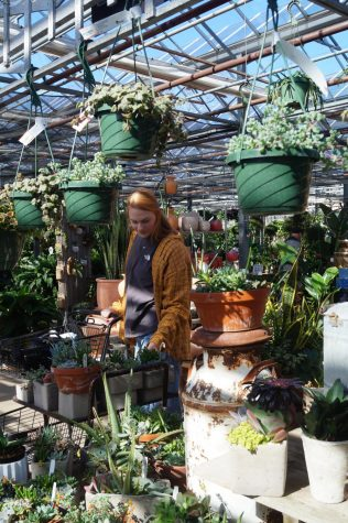 One Plant at a Time: Sophomore cultivates world of her own