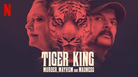 """Tiger King"" follows the story of multiple big cat sanctuaries in the U.S"